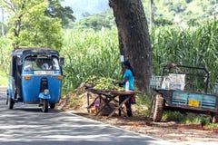 Un vendeur de fruit attend des clients sur le bord de la route près de Pottuvil sur la Côte Est de Sri Lanka images libres de droits