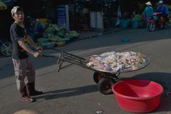 Un vendeur de viande dans les rues de Can Tho Image libre de droits