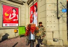 Un vendeur vendant les fruits glacés photo libre de droits