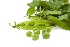 Un verde di pisello è in un baccello Fotografia Stock Libera da Diritti