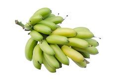 Un verde tropicale del mazzo della banana Immagine Stock
