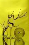 Un verre à vin, deux vases en verre et quelques brindilles Image libre de droits