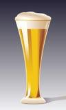 Un verre de bière Images stock