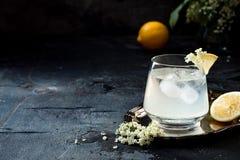 Un verre de genièvre fait maison de fleur de sureau aigre ou de limonade garnie avec des fleurs de sureau fraîchement sélectionné photo stock