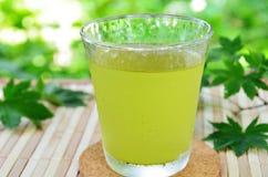 Un verre de thé vert photo libre de droits