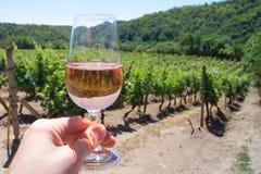 Un verre de vin rose sur un vignoble photo stock