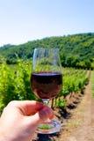 Un verre de vin rouge sur un vignoble photo stock
