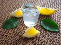 Un verre de vodka ukrainienne sur une table en bois Nourriture rustique Images libres de droits