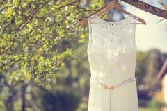 Un vestito da sposa che appende su un albero Immagine Stock