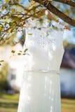 Un vestito da sposa che appende su un albero Immagini Stock