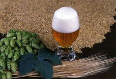 Un vetro di birra Immagini Stock Libere da Diritti