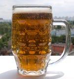 Un vetro di birra Fotografie Stock