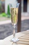 Un vetro di champagne Immagine Stock