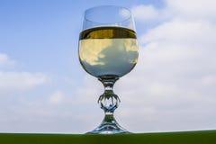 Un vetro di champagne Fotografia Stock Libera da Diritti