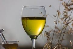 Un vetro di vino bianco Immagini Stock Libere da Diritti