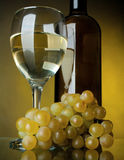Un vetro di vino, della bottiglia e dell'uva Fotografie Stock