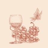 Un vetro di vino e due mazzi di uva Fotografia Stock Libera da Diritti