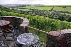 Un viñedo del vino con muebles del jardín Imágenes de archivo libres de regalías