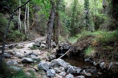 Un viaggio d'escursione alla cascata di Caledonia lungo una piccola corrente del fiume, vicino a Platres, il Cipro Fotografia Stock Libera da Diritti