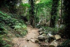 Un viaggio d'escursione scenico attraverso la foresta alla cascata di Caledonia vicino a Platres, Cipro Fotografia Stock