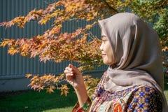 Un viajero de una mujer musulm?n, llevando un hijab y la ropa del batik, miraba las hojas de arce que ella cogi? al lado de fotografía de archivo libre de regalías