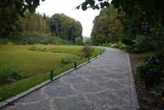 Un vicolo del parco di progressione ha allineato con le mattonelle sui precedenti di bei alberi verdi decorativi Immagini Stock