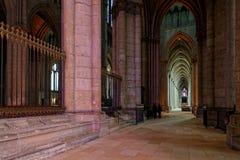 Un vicolo dentro la cattedrale di Reims immagini stock libere da diritti