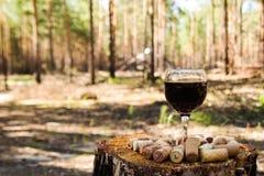 Un vidrio con un vino rojo y corchos del vino en un tocón en un bosque del verano fotografía de archivo libre de regalías