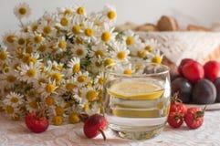 Un vidrio de agua con una rebanada del limón en ella, un ramo de manzanillas y una placa de ciruelos maduros en una superficie de Fotografía de archivo