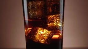 Un vidrio de cola de restauración con los cubos de hielo flotantes almacen de video