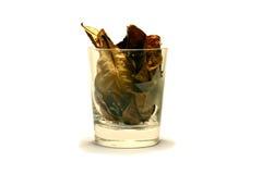 un vidrio de hojas secas en un aislante blanco del fondo fotografía de archivo libre de regalías