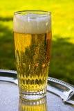 Un vidrio de plata de la cerveza en una bandeja Foto de archivo libre de regalías