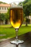 Un vidrio de restauración de cerveza imagenes de archivo
