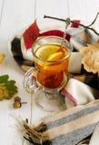 Un vidrio de té caliente con el limón Fotografía de archivo libre de regalías