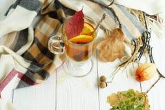 Un vidrio de té caliente con el limón Imagen de archivo