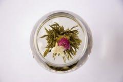 Un vidrio de té floreciente del artesano Fotografía de archivo
