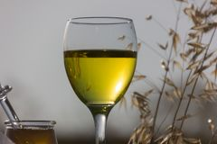 Un vidrio de vino blanco Imágenes de archivo libres de regalías