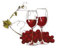 Un vidrio de vino rojo con una rama de la uva imagenes de archivo