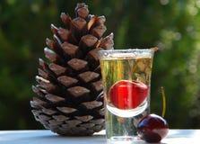 Un vidrio del licor y de un cono del pino foto de archivo
