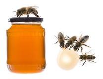 Un vidrio del tarro con la miel y las abejas Foto de archivo libre de regalías