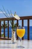 Un vidrio del zumo de naranja y de un florero con una flor contra el mar Imagen de archivo