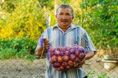 Un vieil homme avec un sac des oignons Photographie stock libre de droits