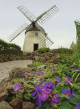 Un vieil inGraciosa de moulin à vent, Açores photographie stock libre de droits