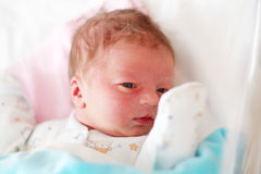 Un viejo bebé recién nacido del día Imágenes de archivo libres de regalías