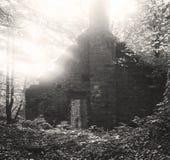 Un vieux bâtiment abandonné de moulin dans les bois
