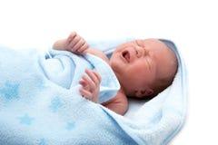 Un vieux bébé pleurant de semaine dans la couverture sur le blanc Photographie stock libre de droits