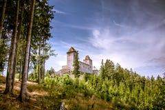 Un vieux château sur une colline dans une forêt images stock