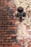 Un vieux mur battu de rouge de brique avec le plâtre blanc et une cloche cassée rouillée photo stock
