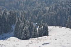 Un vieux parc à moutons abandonné couvert dans la neige au début de l'hiver Photo libre de droits
