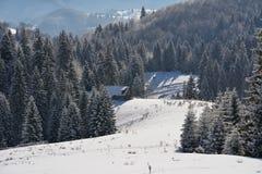 Un vieux parc à moutons abandonné couvert dans la neige au début de l'hiver Photographie stock libre de droits